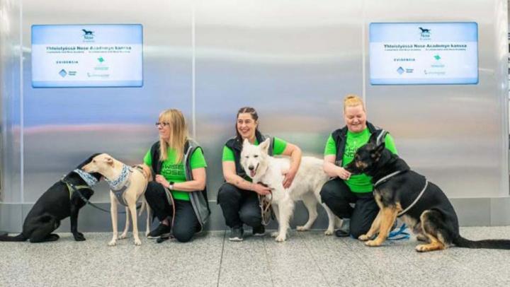 COVID-19: Cães usados no aeroporto de Helsínquia para detetar vírus
