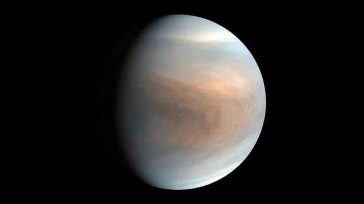 Imagem de Vénus, onde foi encontrada fosfina, um indicador de vida