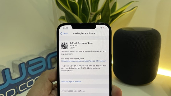 Imagem iOS 14.3 beta da Apple