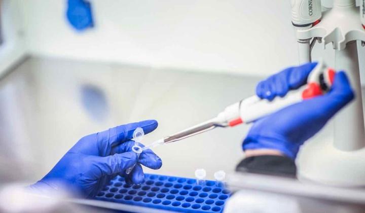 Vacina da Moderna tem 100% de eficácia em casos graves
