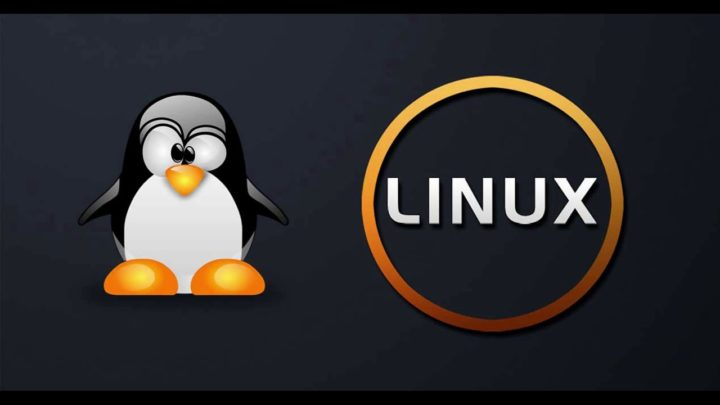TOP 5 most popular Linux distributions in 2020! Do you use any of them?