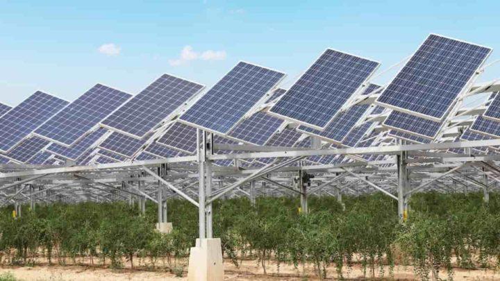 Sistema fotovoltaico agrícola, em parceria com a Huawei.
