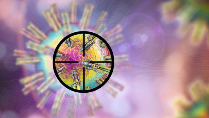 COVID-19: Há 3 novas variantes do vírus a circular em Portugal