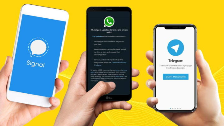 Signal Telegram WhatsApp adesão downloads