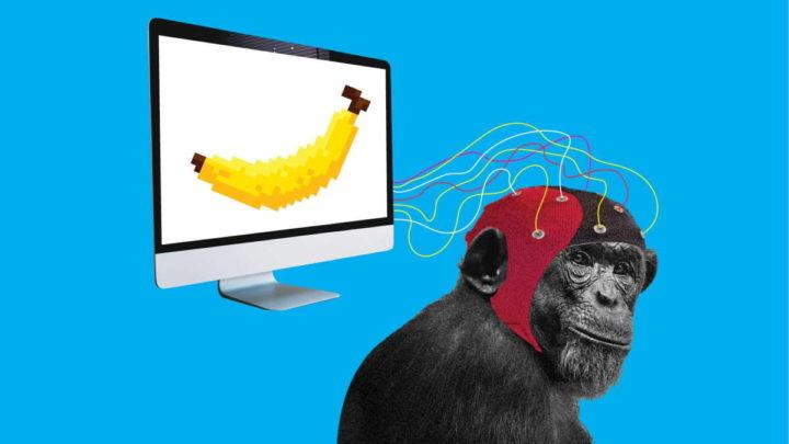 Neuralink Elon Musk macaco cérebro jogar