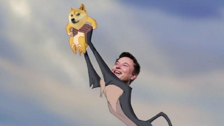 Elon Musk e a cara da dogecoin