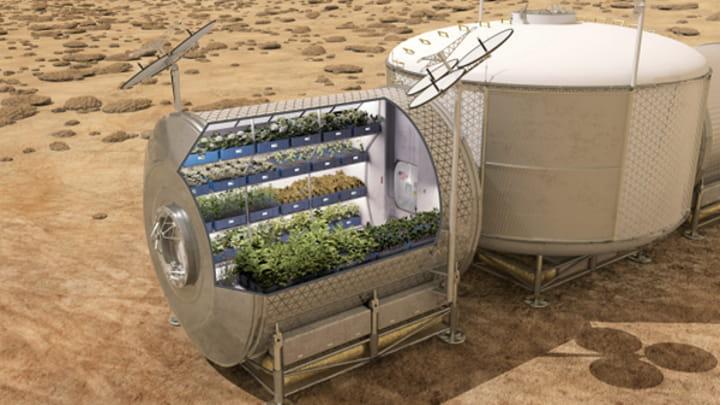 Conceito para crescimento de vegetais em Marte
