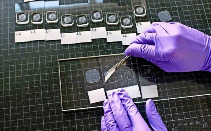 Portugueses criam técnica permite criar em pouco tempo um órgão-em-chip