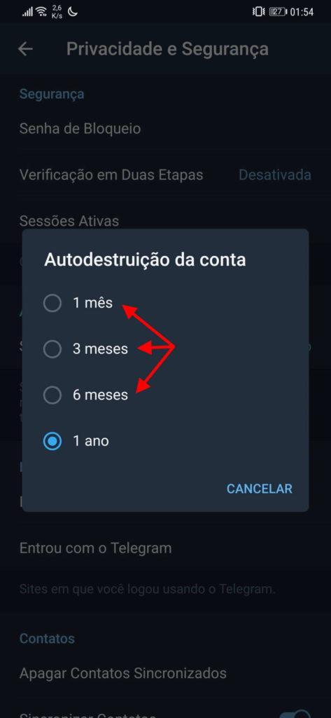 Telegram conta eliminação automática ativar