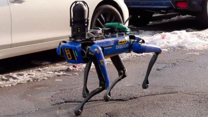 Imagem câo robô polícia de Nova Iorque