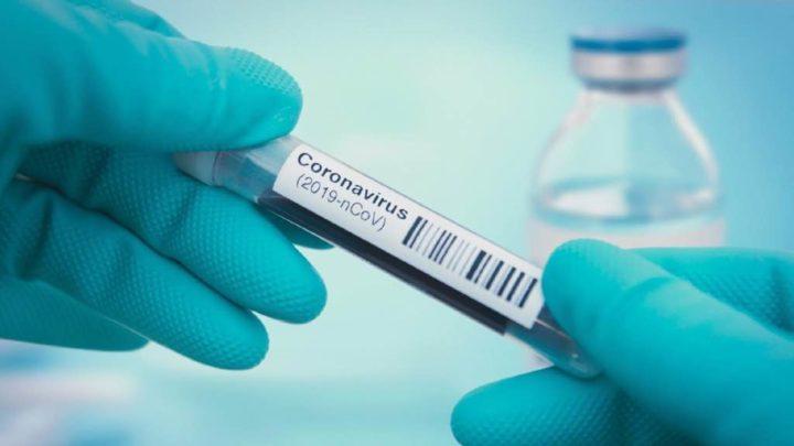 COVID-19: Testes de imunidade celular em a Portugal a 15 de abril