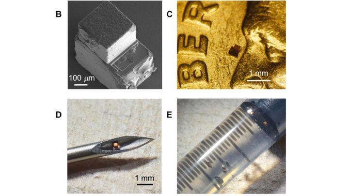 Imagem do tamanho microscópico do chip