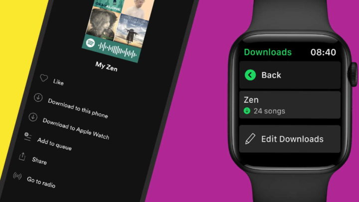 Spotify Apple Watch músicas descarregar