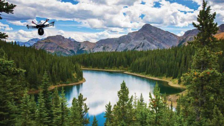 Imagem Drones Flash Forest