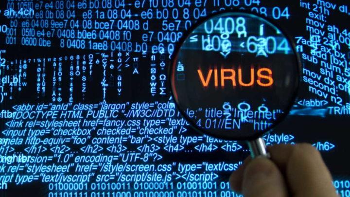Gozi Paunescu Colômbia vírus tribunal