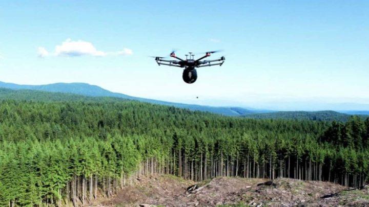 Imagem drone plantador de árvores
