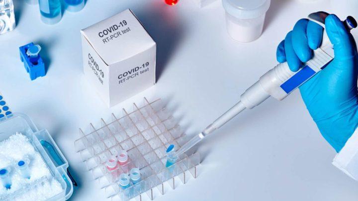 COVID-19: Bactérias do intestino produzem compostos que inibe o vírus