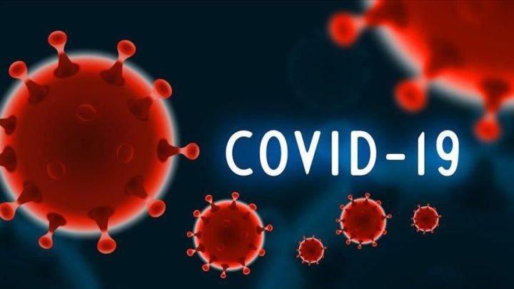Pandemia Clara: Como está o seu concelho na COVID-19?