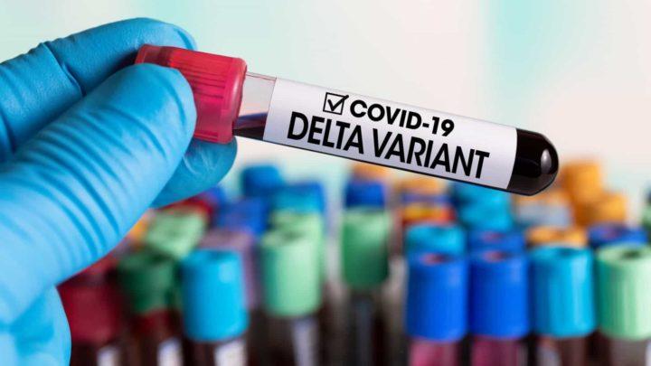 COVID-19: Variante Delta não provoca casos mais graves nas crianças