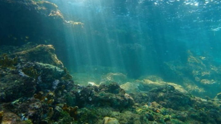 Fundo do oceano