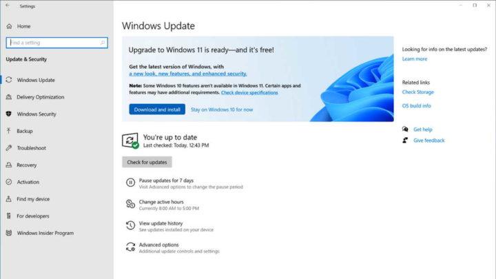 Lanzamiento de Microsoft Insiders de Windows 11
