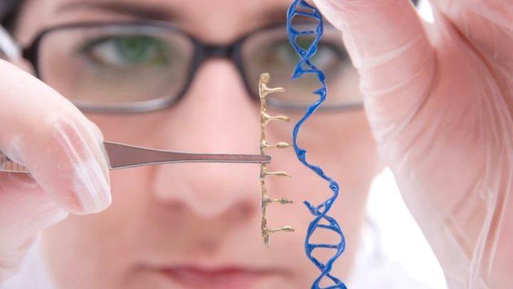Imagem ilustração código genético